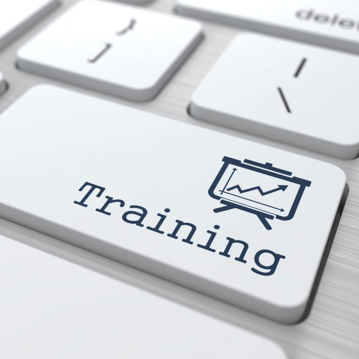 training scams